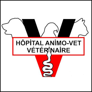 Animo-vet Veterinary Hospital
